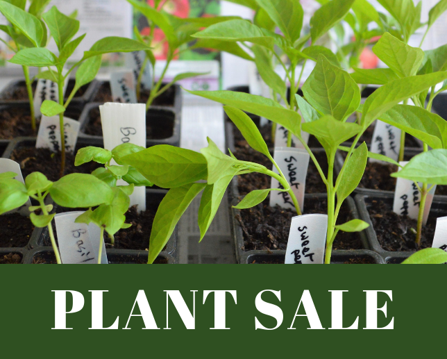 Week-long Plant Sale